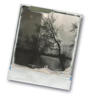 Tanja Deuß: Urdenbacher Kämpen. Hochwasser 2018